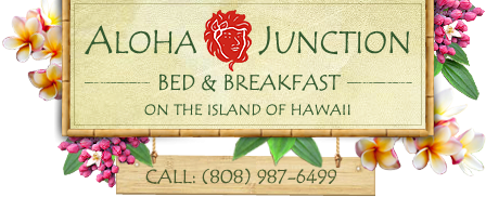 Bed and Breakfast secure online reservation system
